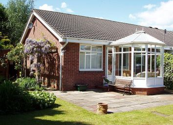 Thumbnail 2 bed bungalow to rent in The Steads, Morpeth