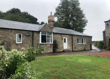 Thumbnail 3 bed semi-detached bungalow to rent in West Link Hall Cottages, Chathill, Alnwick