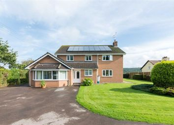 Thumbnail 5 bed detached house for sale in Knox Road, Lydney, Gloucester
