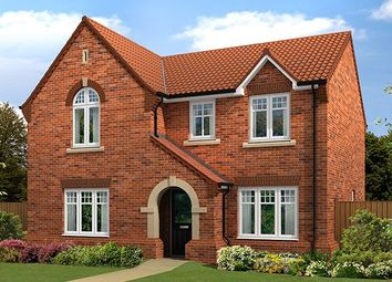 """Thumbnail 4 bedroom detached house for sale in """"The Salcombe V2"""" at Hockley Crescent, Langthorpe, Boroughbridge, York"""