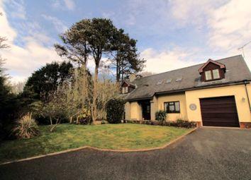 Thumbnail 4 bed detached house for sale in Dyffryn Ardudwy, Dyffryn Ardudwy