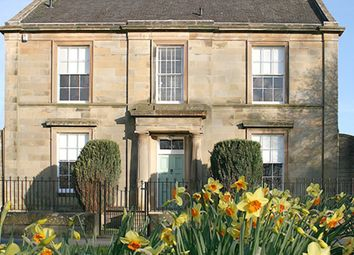 Thumbnail 4 bed flat to rent in Park Terrace, King's Park, Stirling