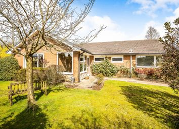 Thumbnail 4 bed bungalow to rent in The Spinney, Norley, Frodsham