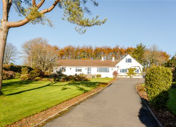 Thumbnail 5 bedroom bungalow for sale in Haytor, Newton Abbot, Devon