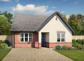 Thumbnail 3 bed bungalow for sale in Summerpark Road, Dumfries