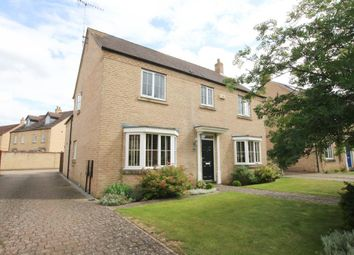 Thumbnail 4 bed detached house for sale in Columbine Road, Ely