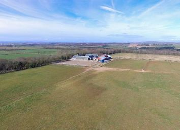 Thumbnail 3 bed equestrian property for sale in High Ward Neuk, Monkton, Prestwick, South Ayrshire