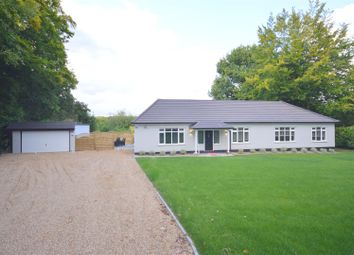 Thumbnail 3 bedroom bungalow to rent in The Glade, Kingswood, Tadworth