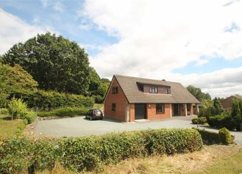Thumbnail 4 bed detached bungalow for sale in Llansantffraid