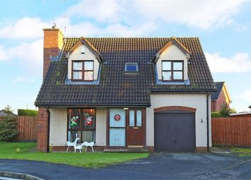 Thumbnail 3 bed detached house for sale in Avondale Manor, Craigavon, County Armagh