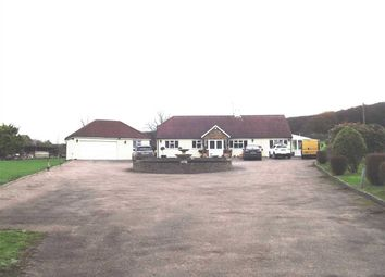 Thumbnail 4 bed detached house for sale in Holyfield, Waltham Abbey