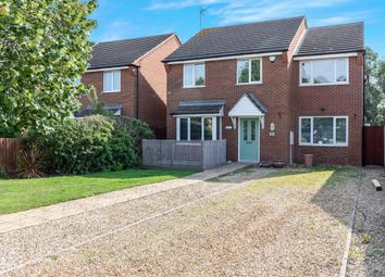 Thumbnail 4 bedroom detached house for sale in Red Barn, Turves, Peterborough