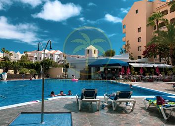 Thumbnail Studio for sale in Los Cristianos, Canary Islands, 38650, Spain