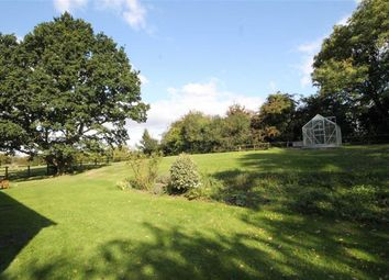 Thumbnail 3 bed detached house to rent in Uffington, Faringdon, Oxon