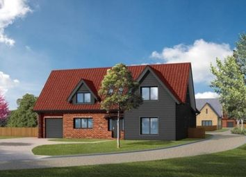 Thumbnail 5 bedroom detached house for sale in Turnpike Lane, Red Lodge, Bury St. Edmunds