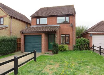 Thumbnail 3 bed detached house to rent in The Meadows, Thurton, Norwich