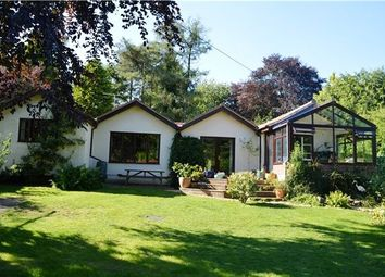 Thumbnail 4 bed detached bungalow for sale in Whiteway, Stroud, Gloucestershire