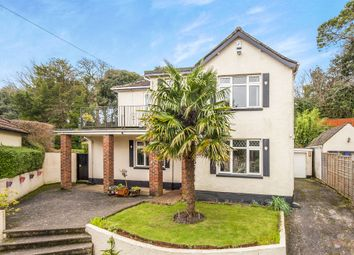 Thumbnail 4 bed detached house for sale in Dosson Grove, Torquay