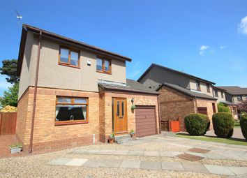 Thumbnail 3 bed detached house for sale in Falcon Drive, Larbert