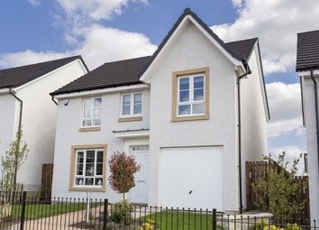 "Thumbnail 4 bed detached house for sale in ""Craigievar"" at Clippens Drive, Edinburgh"