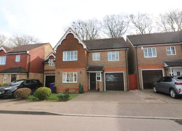 Thumbnail 4 bed detached house for sale in Serpentine Close, Stevenage, Herts