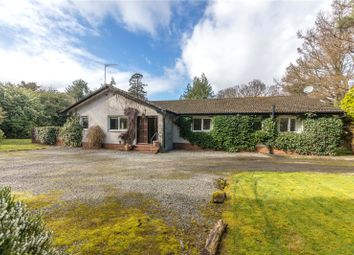 Thumbnail 4 bedroom property for sale in Wood Vale, Main Road, Fairlie, Largs