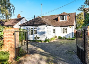 Thumbnail 3 bed detached bungalow for sale in Chavey Down Road, Winkfield Row, Bracknell, Berkshire