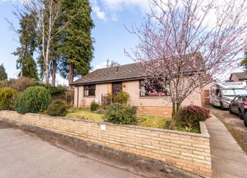 Thumbnail 3 bed detached bungalow for sale in Balformo Road, Scone, Perth
