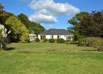 Thumbnail 4 bedroom detached bungalow for sale in The Common, Exmouth