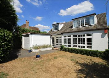 Thumbnail 3 bed bungalow for sale in Green Lane, Chobham, Surrey