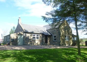 Thumbnail 3 bed detached house to rent in Eglingham, Alnwick