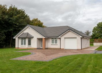 Thumbnail 4 bed detached bungalow for sale in Plot 4 Rosedale Gardens, Greenlea, Dumfries, Dumfries And Galloway.
