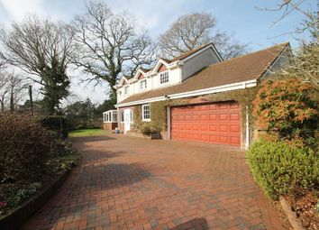 Thumbnail 5 bedroom detached house for sale in Stoggy Lane, Plympton, Plymouth