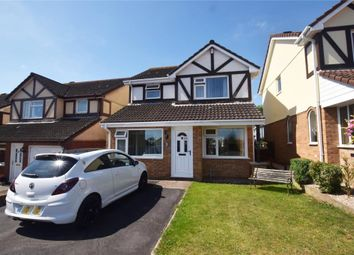 Thumbnail 4 bed detached house for sale in Mulberry Close, Paignton, Devon