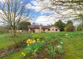 Thumbnail 4 bed detached bungalow for sale in West Drive, Berwick-Upon-Tweed, Northumberland