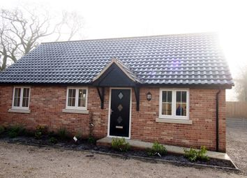 Thumbnail 2 bed detached bungalow to rent in Watton Road, Larling, Norwich