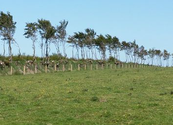 Thumbnail Land for sale in Kinsford Gate, Five Barrows, Kinsford Gate, Brayford