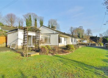Thumbnail 3 bed bungalow to rent in Sycamore Drive, Stroud, Gloucestershire