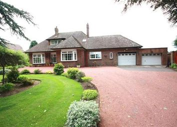 Thumbnail 4 bed detached house for sale in Alloway, Ayr