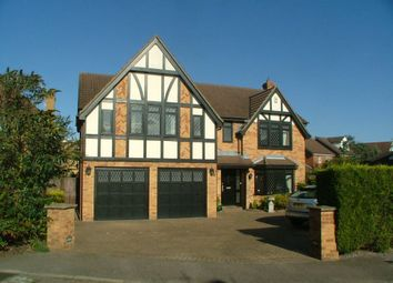 Thumbnail 4 bed property to rent in Ashworth Place, Harlow, Essex