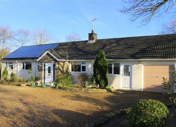 Thumbnail 3 bedroom detached bungalow for sale in Begelly, Kilgetty