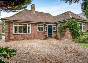 Thumbnail 4 bed bungalow for sale in Thorpe End, Norwich, Norfolk