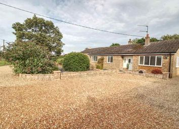 Thumbnail 3 bed semi-detached bungalow to rent in Ferry Road, Clenchwarton, King's Lynn