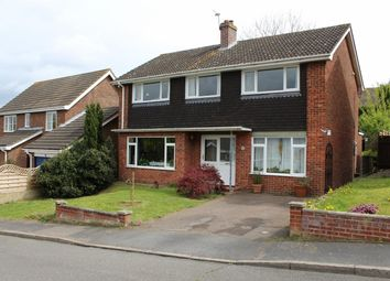Thumbnail 4 bedroom detached house to rent in Bancroft Close, Stoke Holy Cross, Norwich