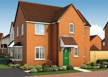 Thumbnail 3 bed detached house for sale in The Coombe, Plot 19 The Academics, Western Avenue, Peterborough, Cambridgeshire