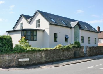 Thumbnail 56 bed detached house for sale in Prince Of Wales Road, Exeter