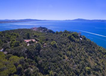 Thumbnail 5 bed villa for sale in Orbetello, Grosseto, Tuscany, Italy