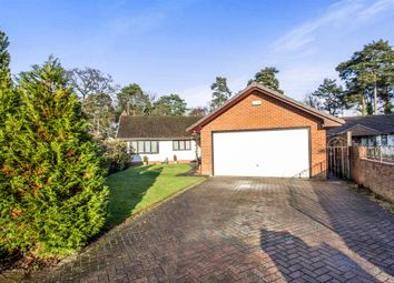 Thumbnail 3 bedroom detached bungalow for sale in Chander Close, Ferndown