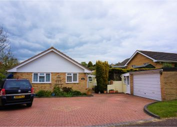 Thumbnail 3 bed detached bungalow for sale in Lake Lane, Bridport