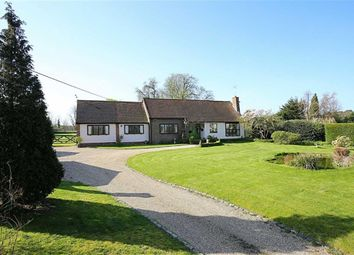 Thumbnail 3 bed detached bungalow for sale in Harlow Road, Roydon, Essex